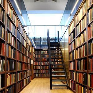 Библиотеки Вавожа