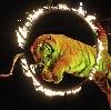 Цирки в Вавоже